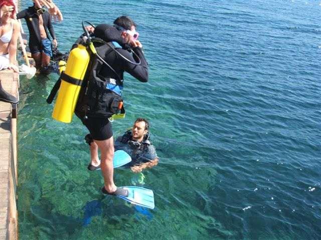 cKc Divers